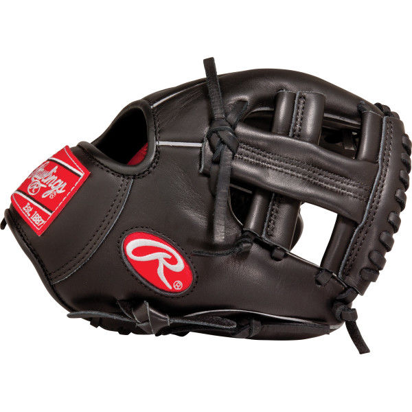 http://www.bestbatdeals.com/images/gloves/rawlings/G95XT_back.jpg