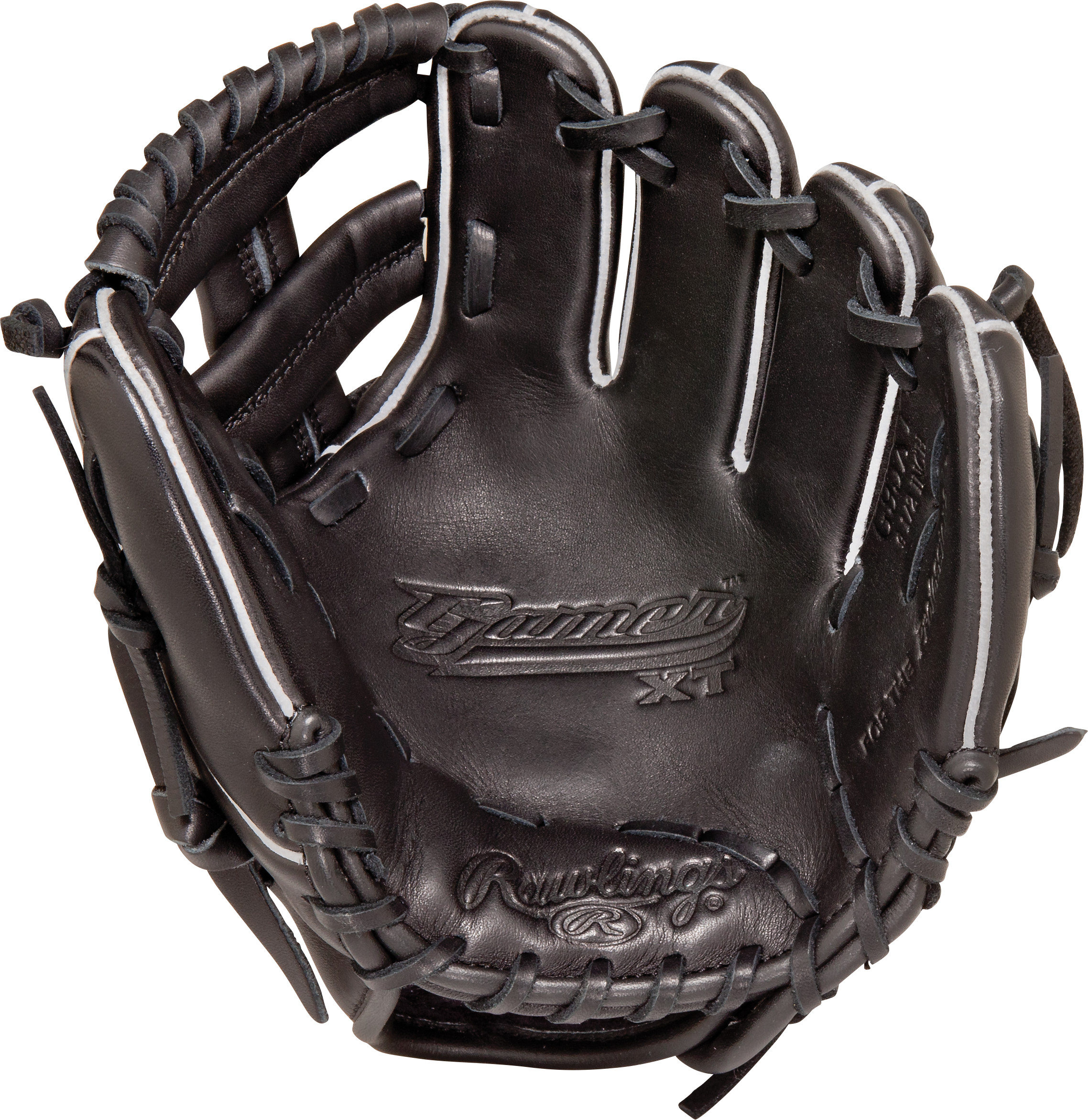 http://www.bestbatdeals.com/images/gloves/rawlings/G95XT_palm.jpg