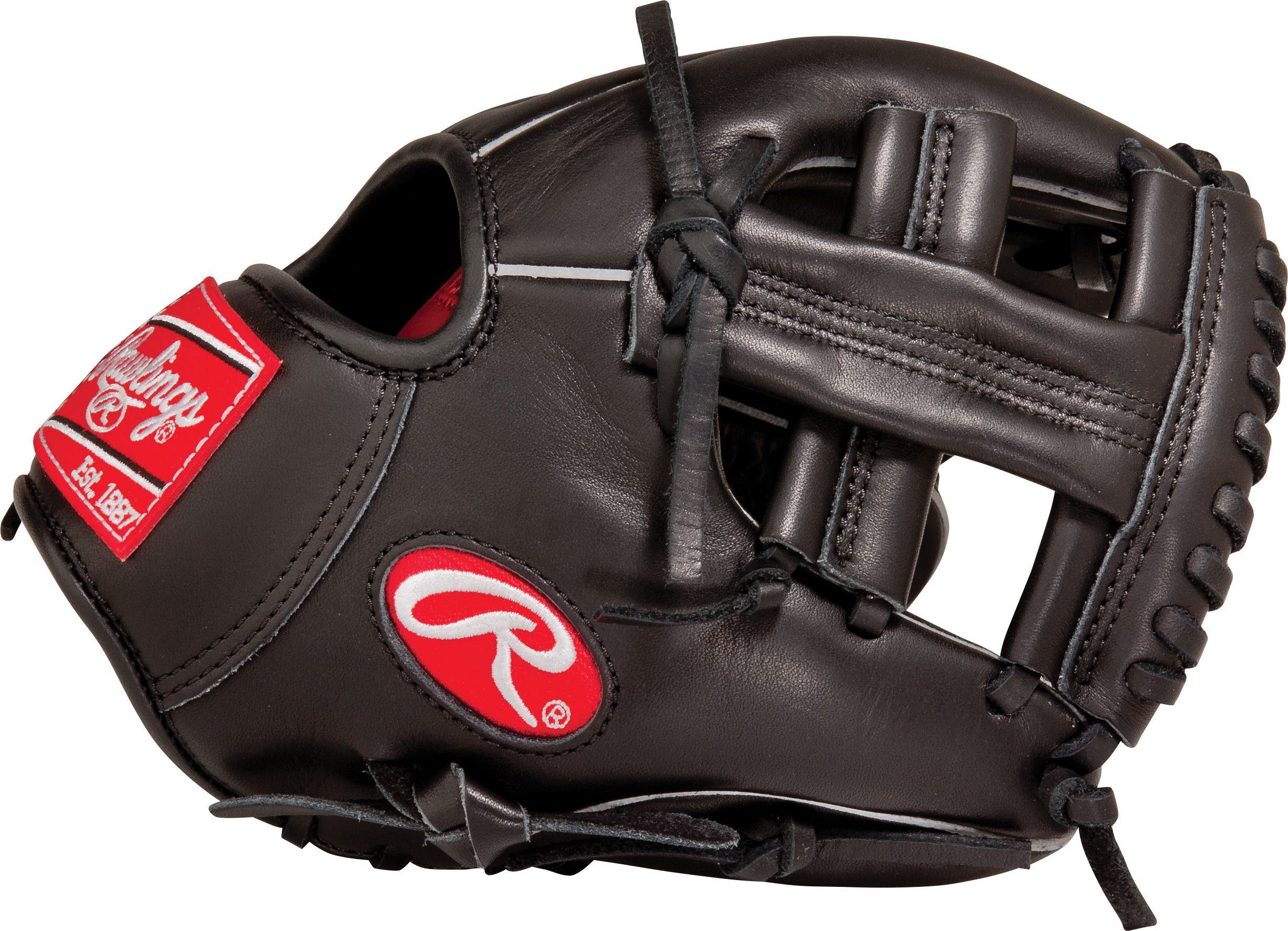 http://www.bestbatdeals.com/images/gloves/rawlings/G95XT_thumb.jpg