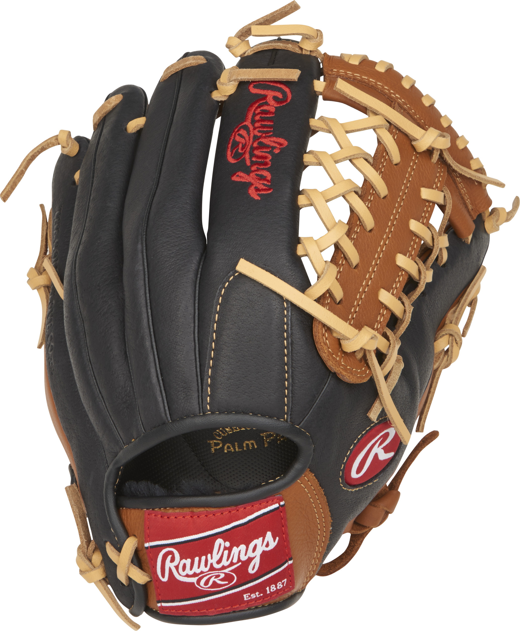 http://www.bestbatdeals.com/images/gloves/rawlings/P115GBMT-2.jpg