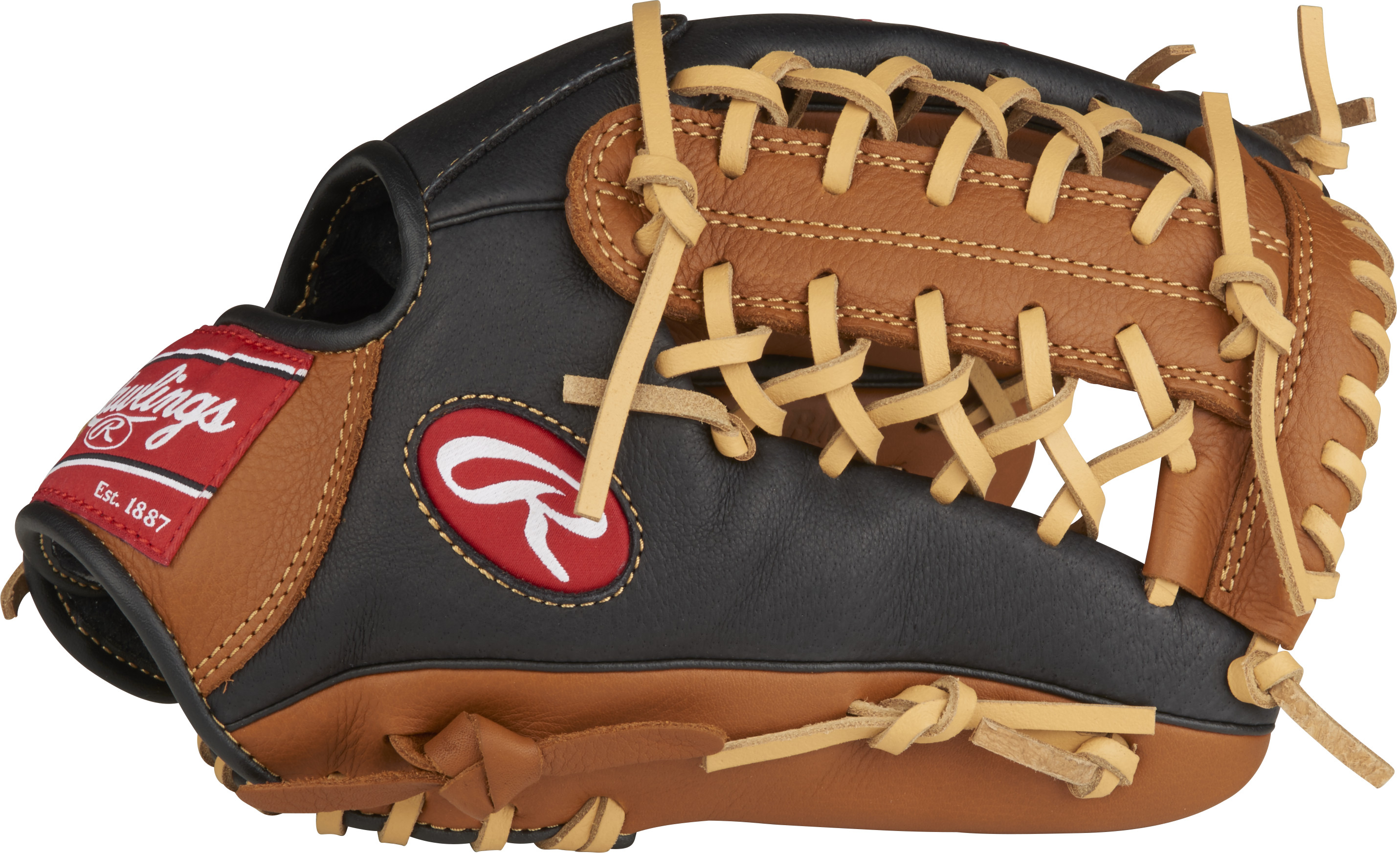 http://www.bestbatdeals.com/images/gloves/rawlings/P115GBMT-3.jpg