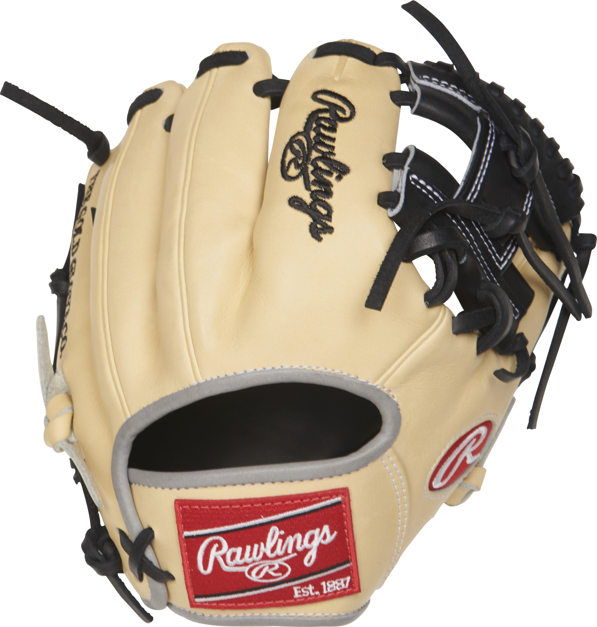 http://www.bestbatdeals.com/images/gloves/rawlings/PRO200TR-2C-2.jpg