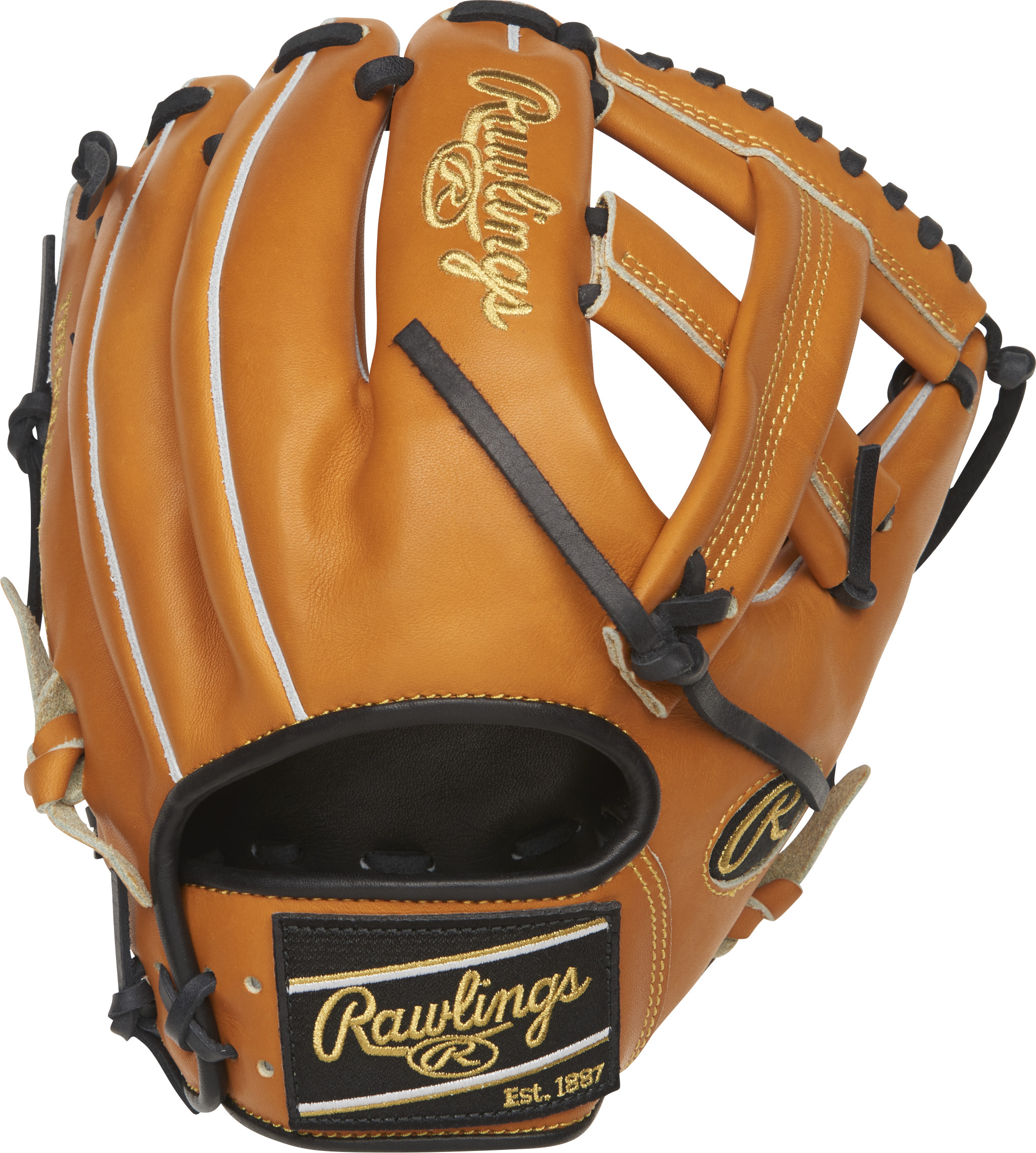 http://www.bestbatdeals.com/images/gloves/rawlings/PRO204-20T-2.jpg