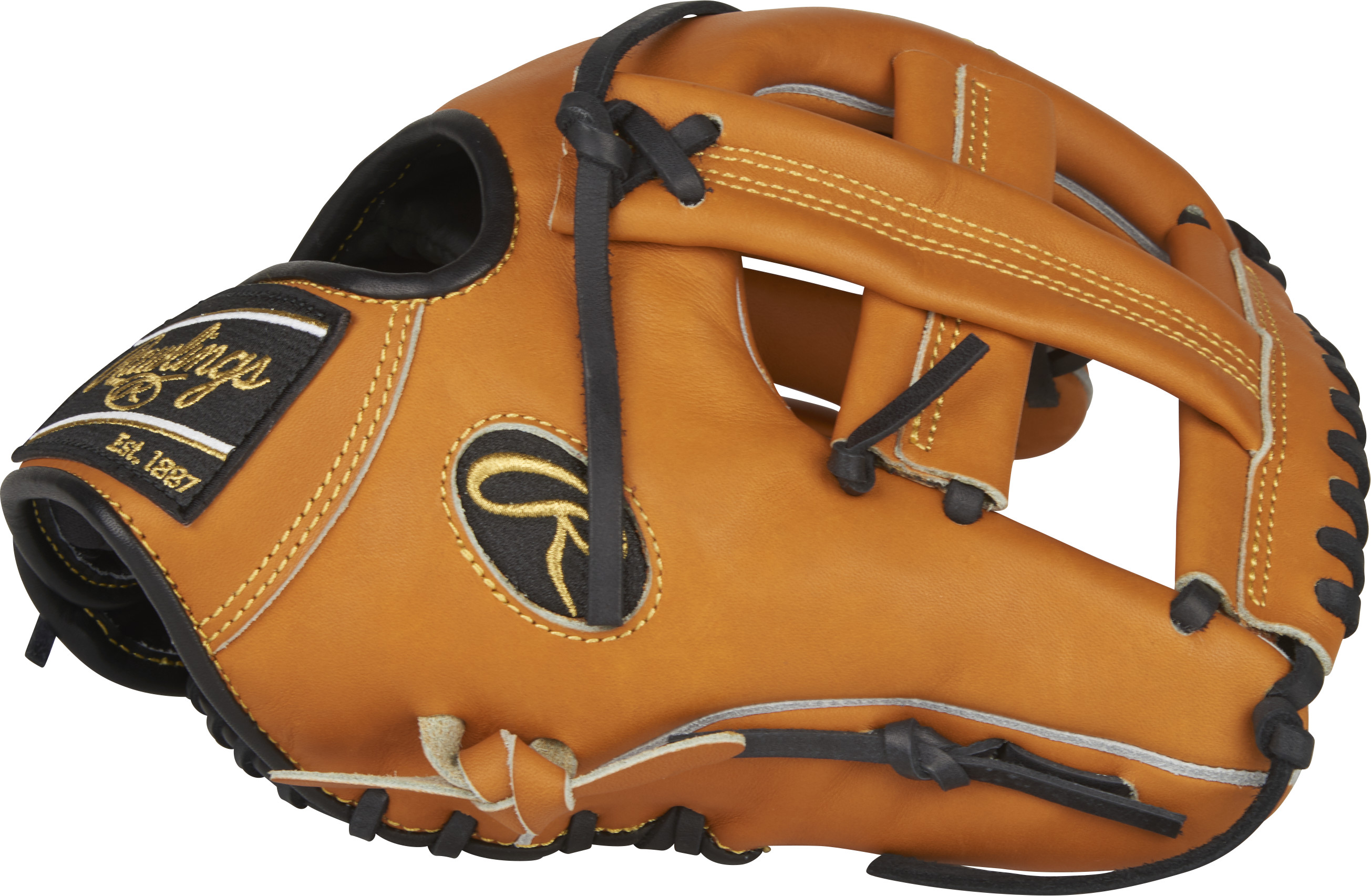 http://www.bestbatdeals.com/images/gloves/rawlings/PRO204-20T-3.jpg