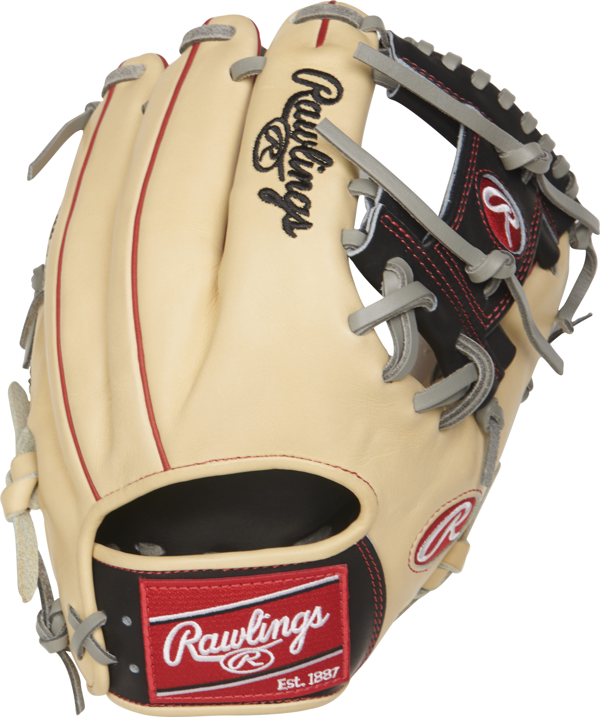 http://www.bestbatdeals.com/images/gloves/rawlings/PRO204-2CBG-2.jpg