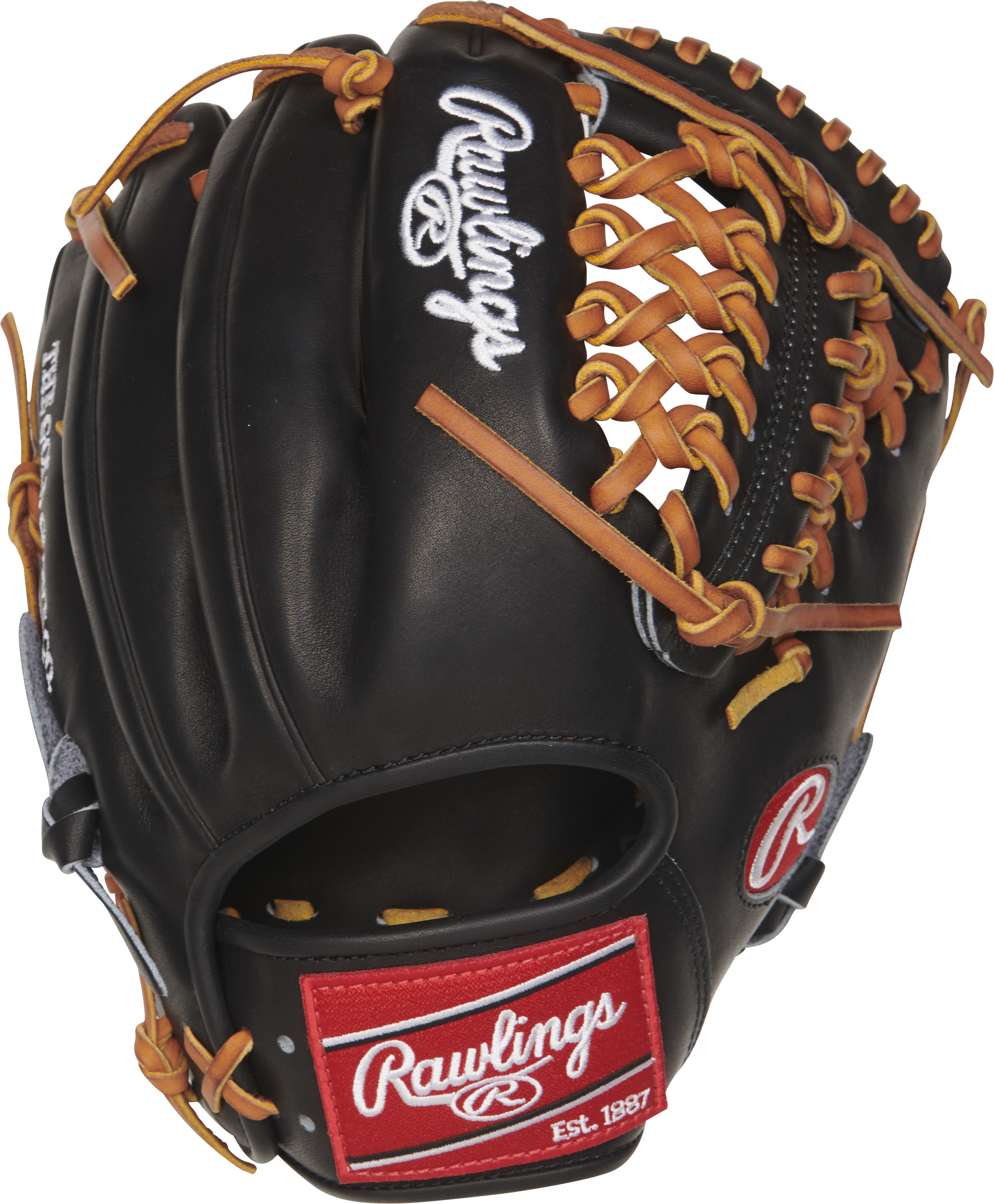 http://www.bestbatdeals.com/images/gloves/rawlings/PRO204-4JBT-2.jpg