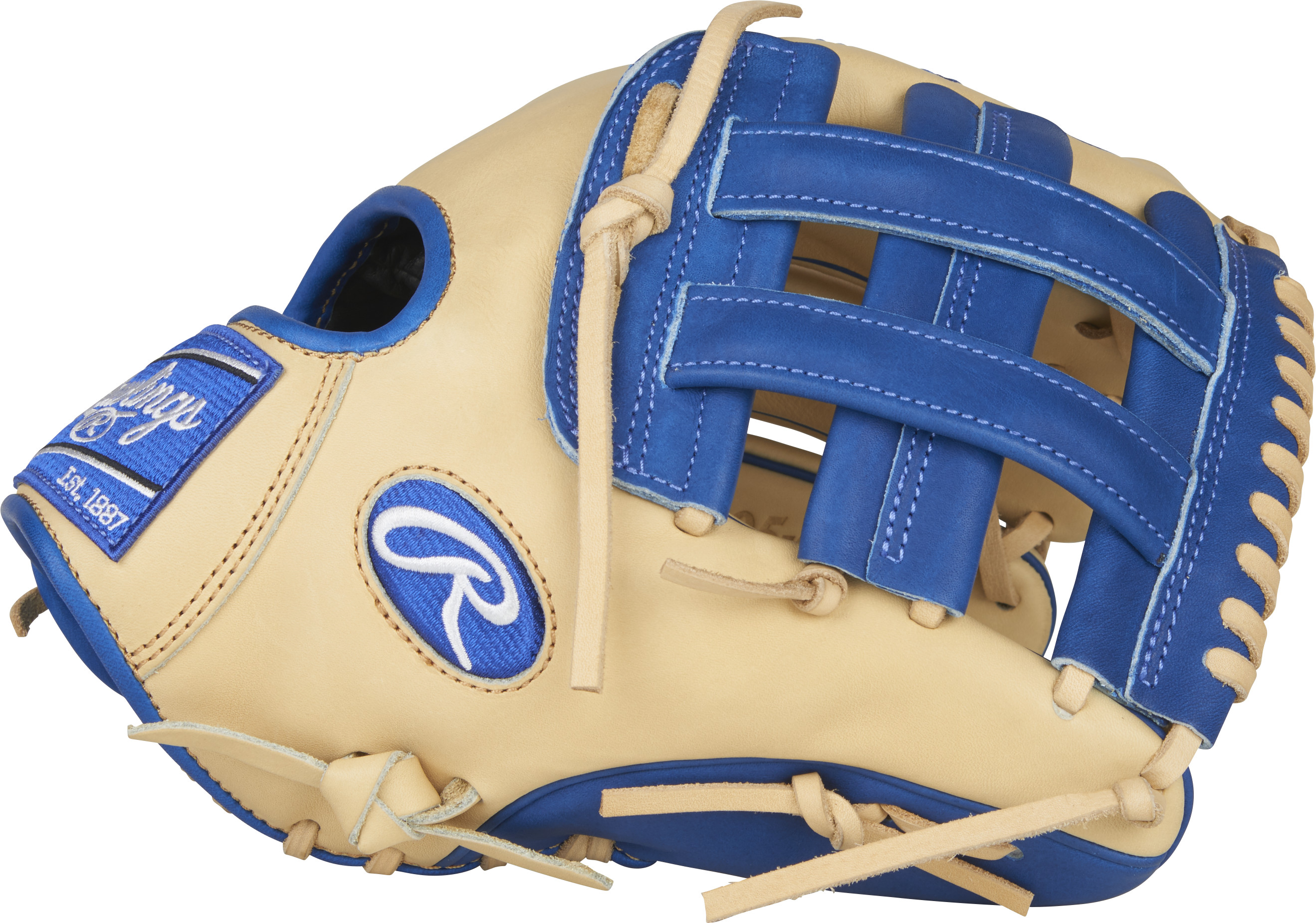 http://www.bestbatdeals.com/images/gloves/rawlings/PRO205-6CCR-3.jpg