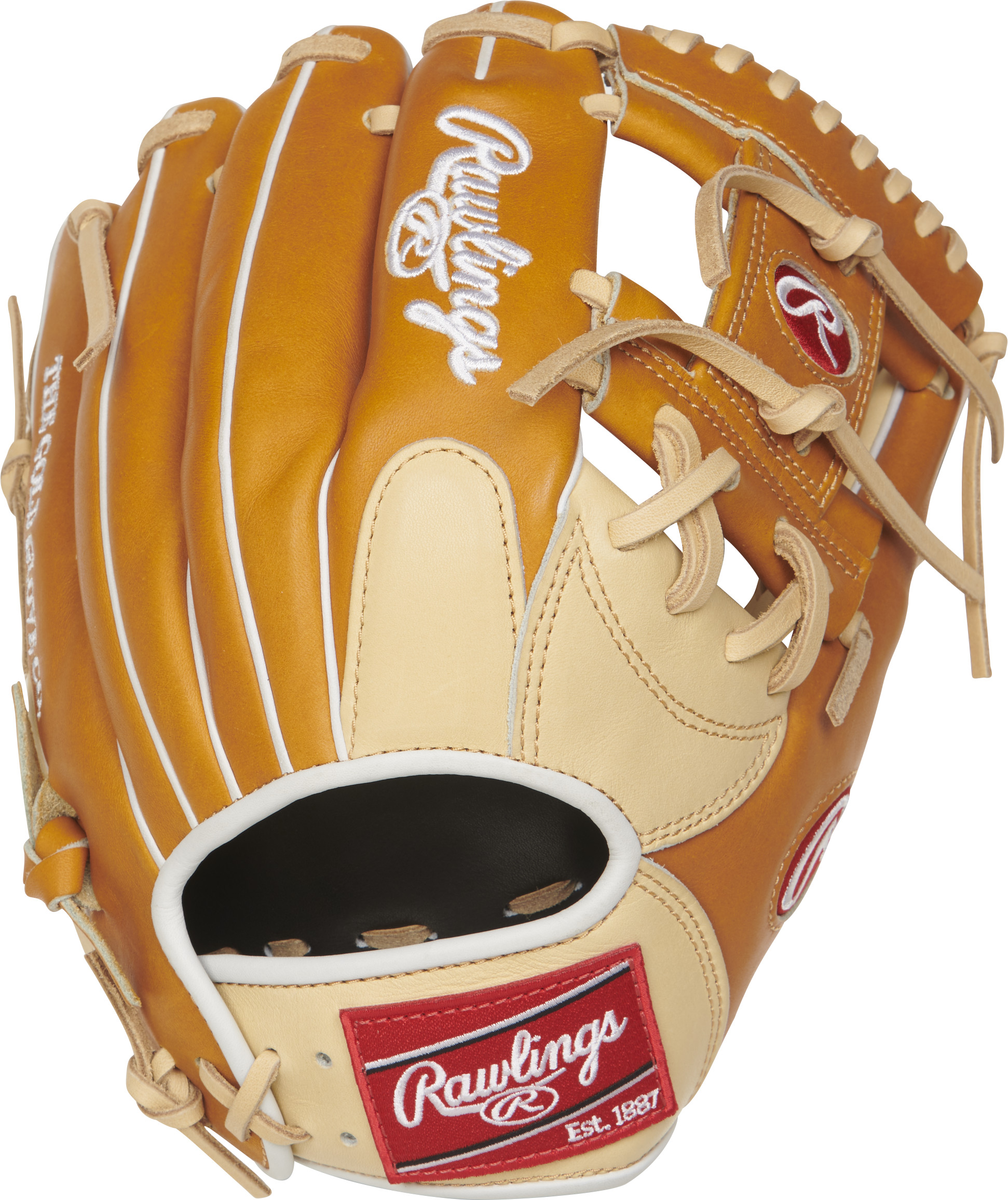 http://www.bestbatdeals.com/images/gloves/rawlings/PRONP4-2CTW-2.jpg
