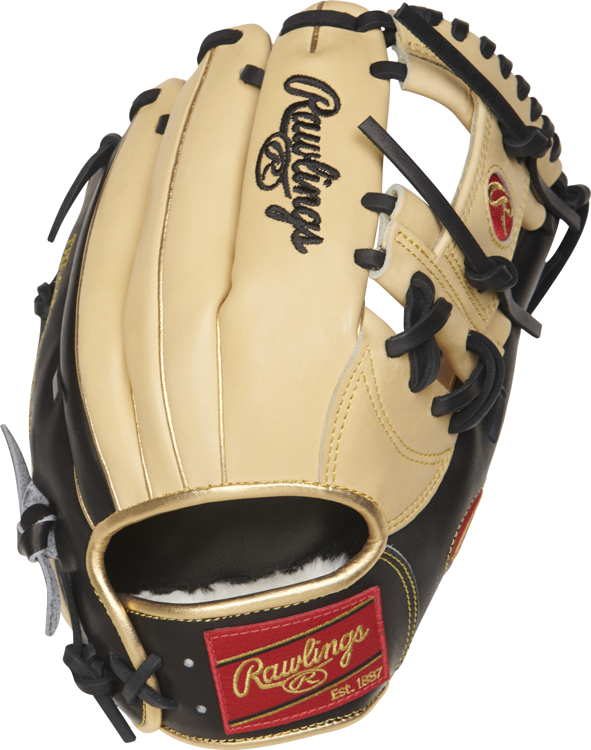 http://www.bestbatdeals.com/images/gloves/rawlings/PROSNP5-2CBG-2.jpg