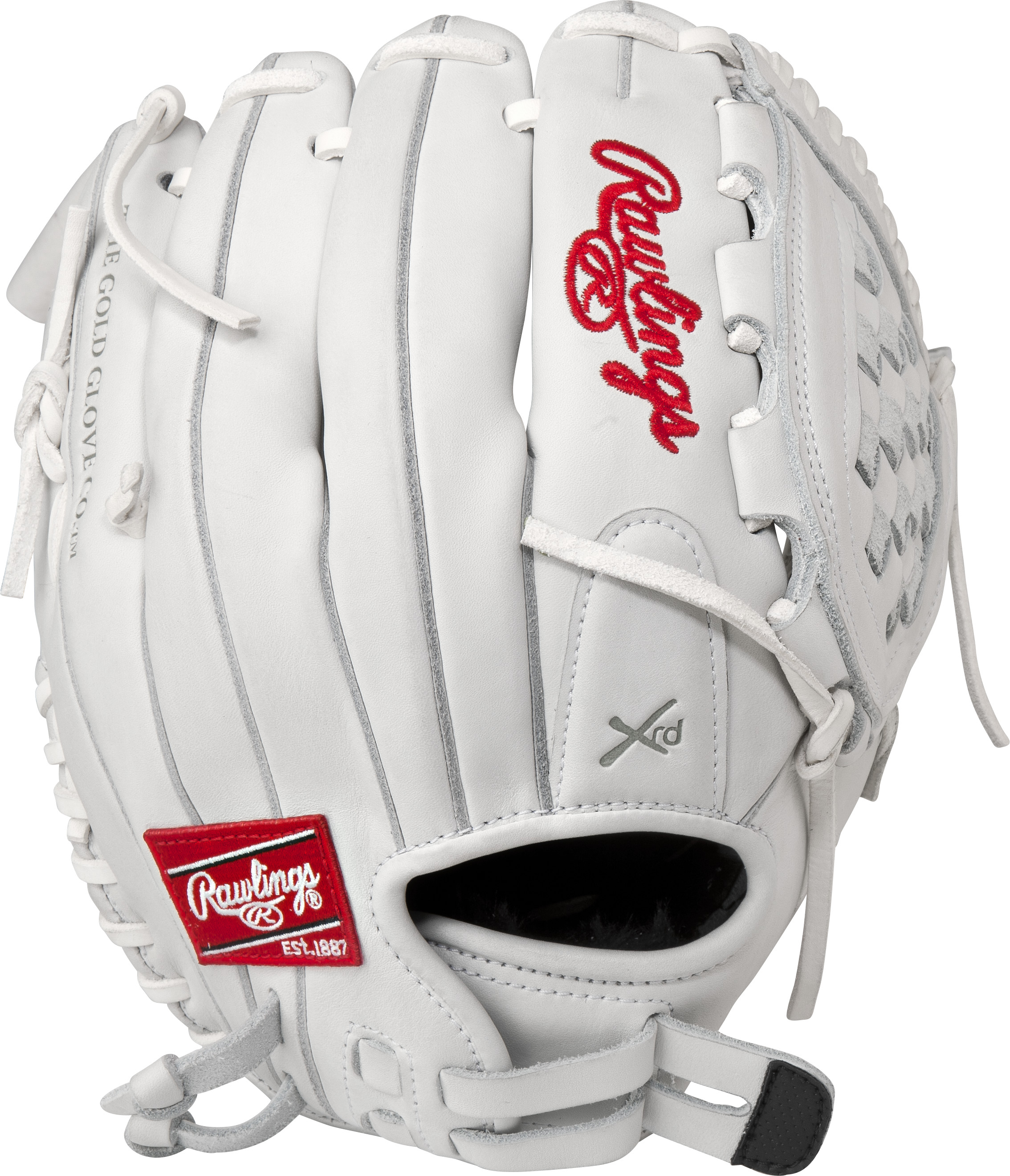 http://www.bestbatdeals.com/images/gloves/rawlings/RLA120_back.jpg
