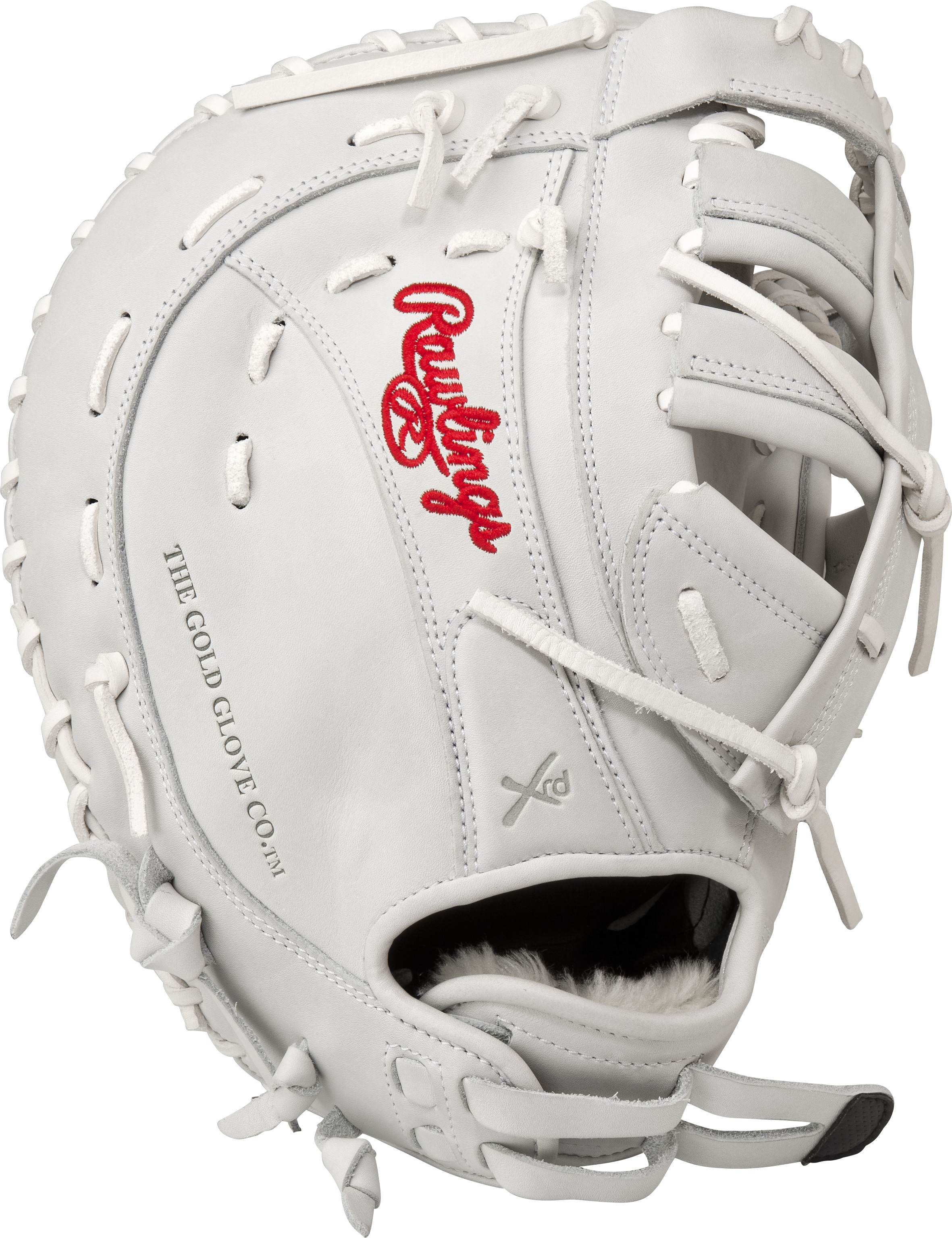 http://www.bestbatdeals.com/images/gloves/rawlings/RLAFB_back.jpg