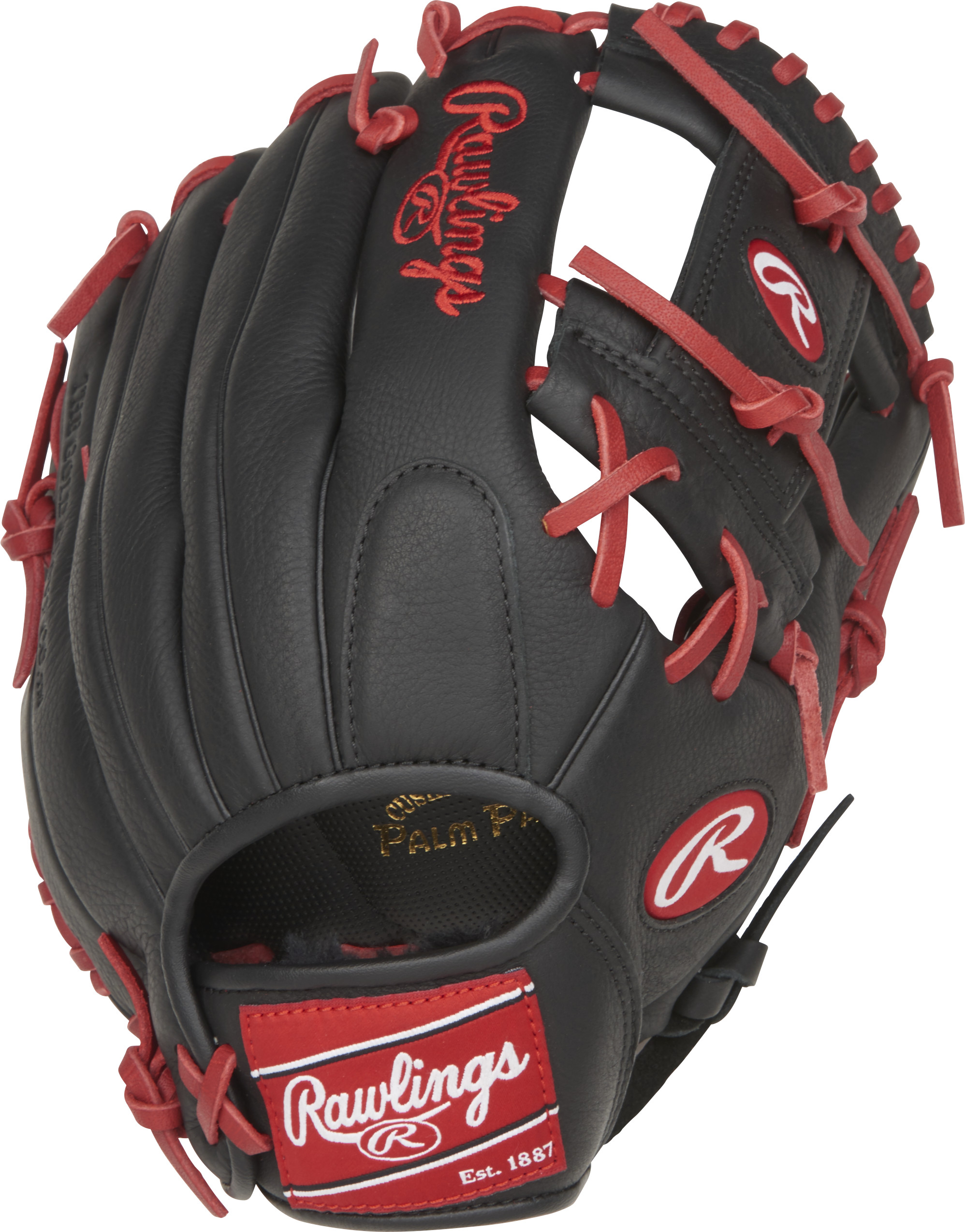 http://www.bestbatdeals.com/images/gloves/rawlings/SPL150FL-2.jpg