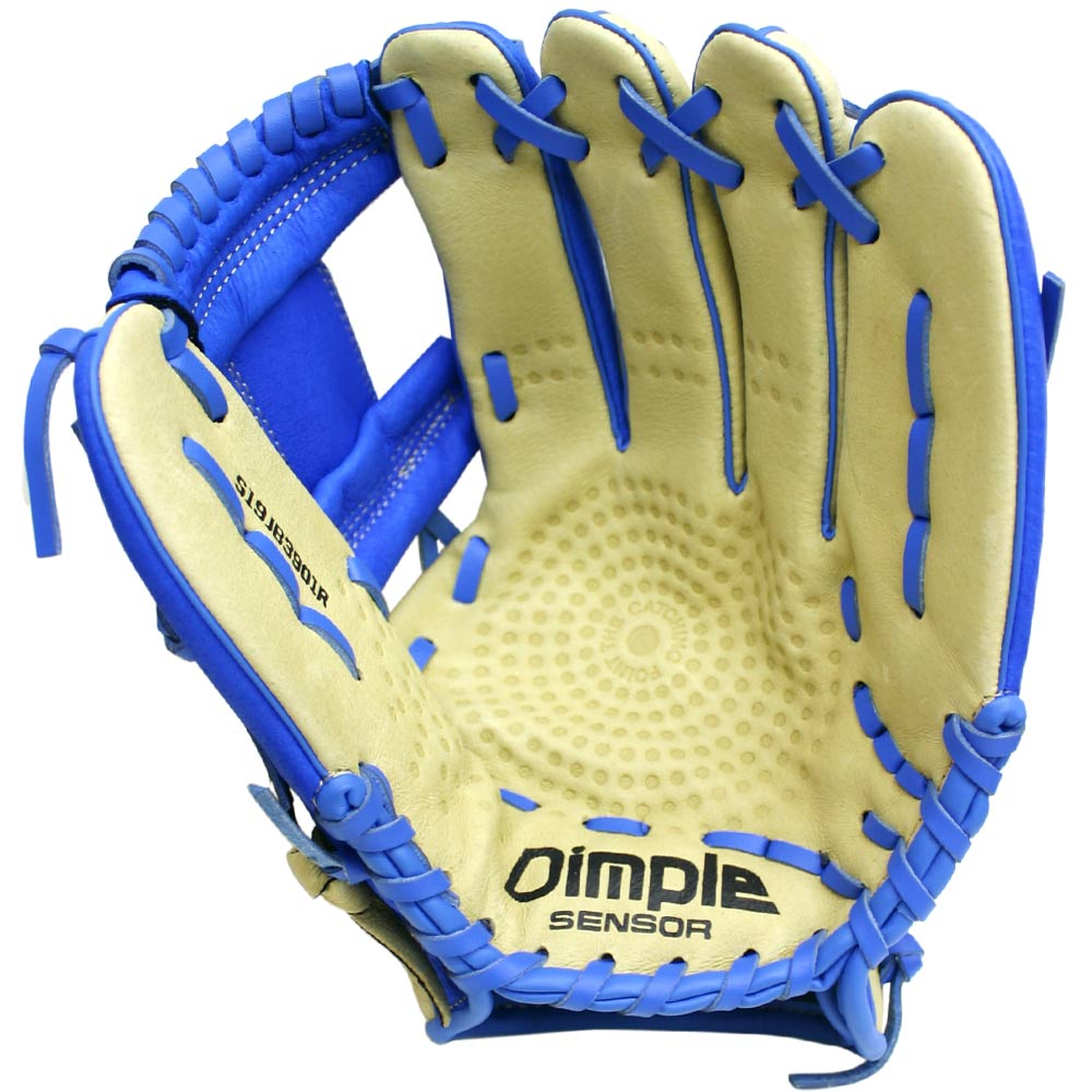 http://www.bestbatdeals.com/images/gloves/ssk/JB9-Prospect-Youth-Camel-Royal-palm.jpg