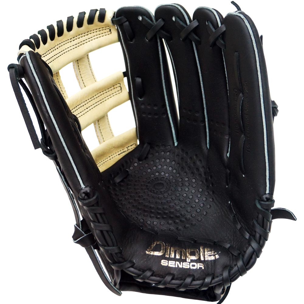 http://www.bestbatdeals.com/images/gloves/ssk/SSK-Highlight-Pro-H-Web-2018-palm.jpg