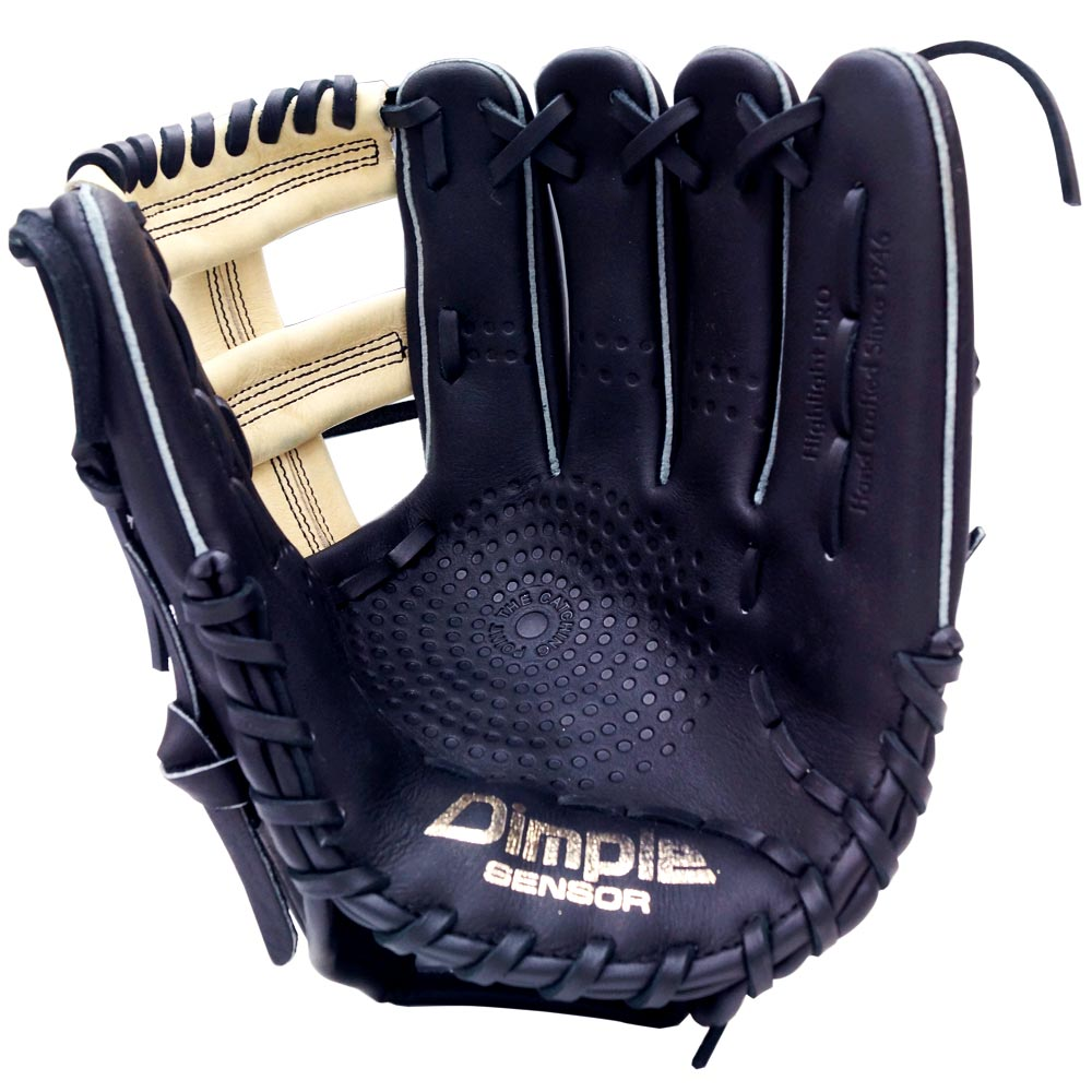 http://www.bestbatdeals.com/images/gloves/ssk/SSK-Highlight-Pro-Post-Web-2018-palm.jpg