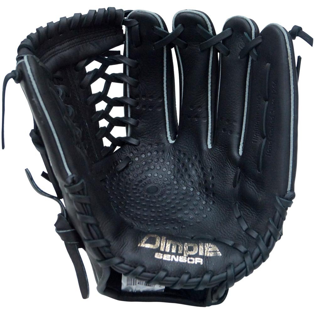 http://www.bestbatdeals.com/images/gloves/ssk/SSK-Highlight-Pro-T-Net-2018-palm.jpg