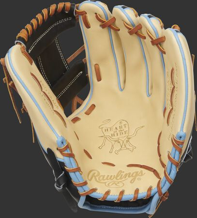 http://www.bestbatdeals.com/images/rawlingsgloves/PRO315-2CBC-1.jpg