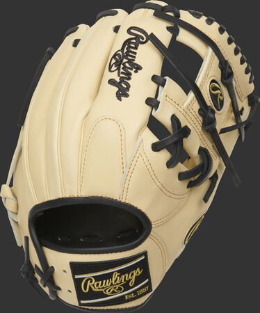 http://www.bestbatdeals.com/images/rawlingsgloves/PRONP4-2CB-2.jpg
