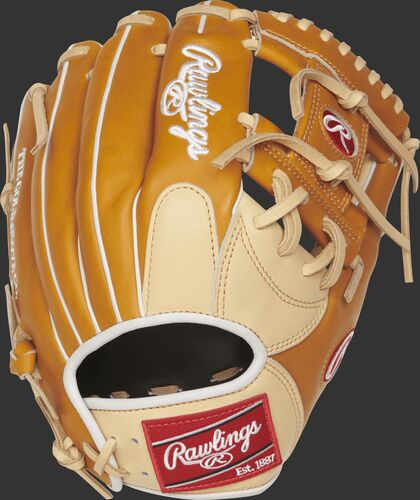 http://www.bestbatdeals.com/images/rawlingsgloves/PRONP4-2CTW-2.jpg