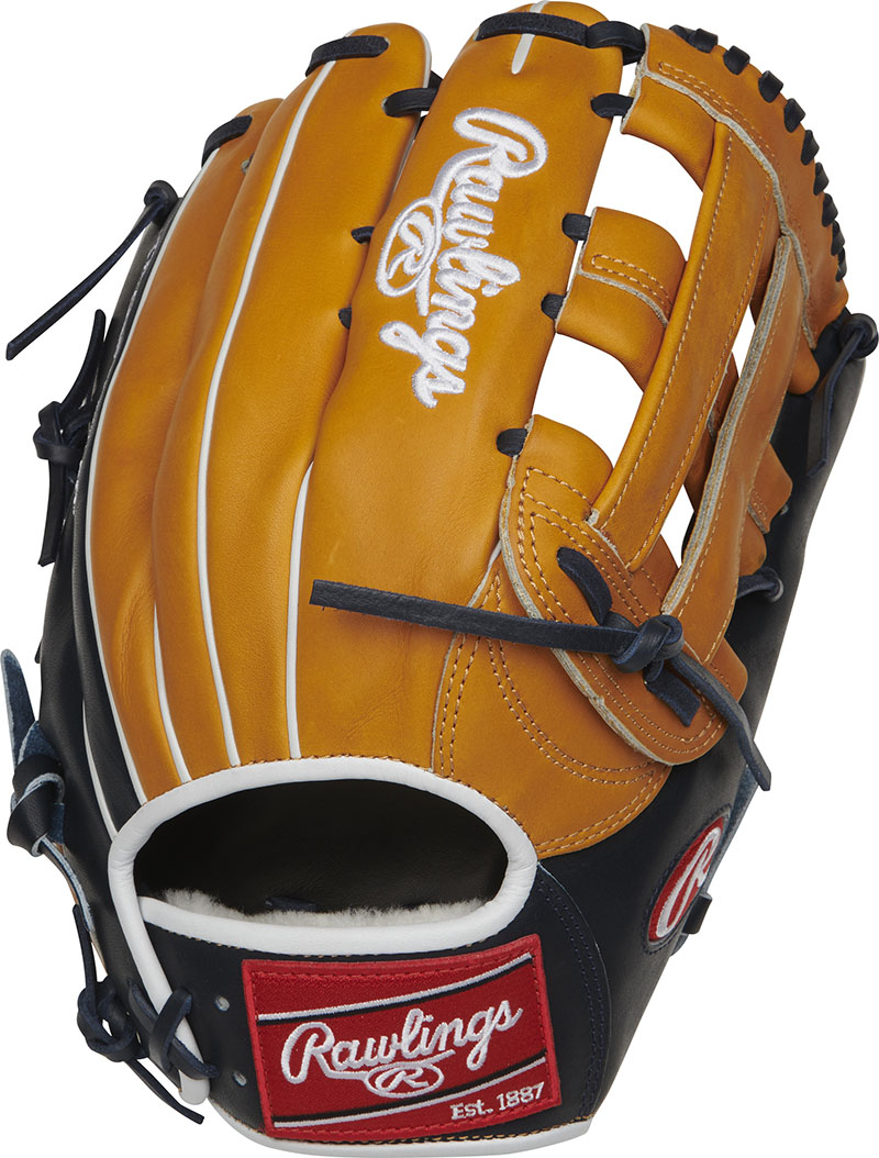 http://www.bestbatdeals.com/images/rawlingsgloves/PROS3039-6TN-2.jpg